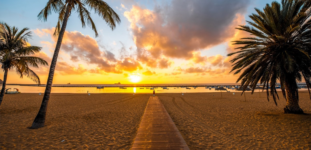 Top 10 Things to do in Tenerife