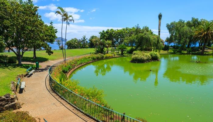 Santa Caterina Park in Madeira