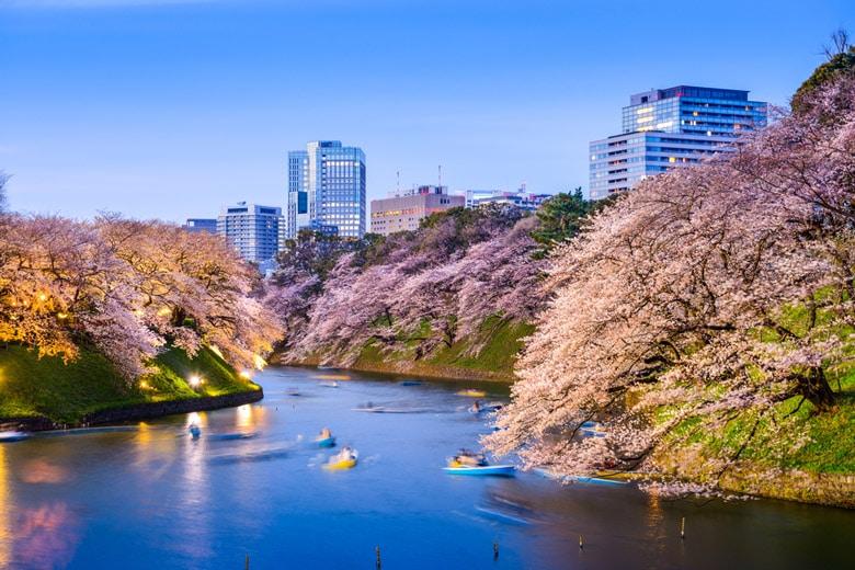 Chidorigafuchi in Tokyo