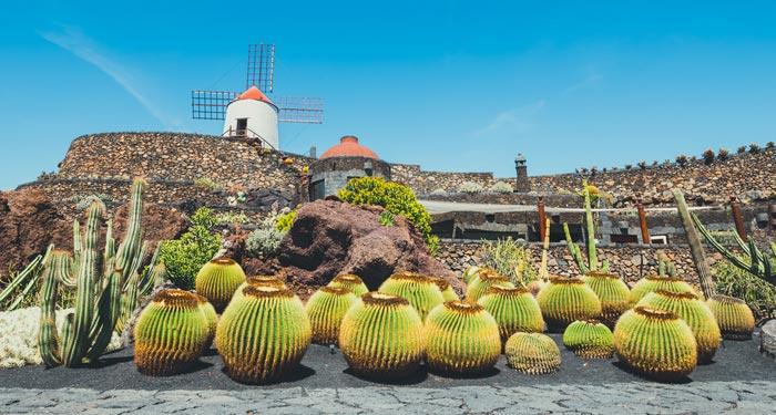 Jardin de Cactus in Lanzarote