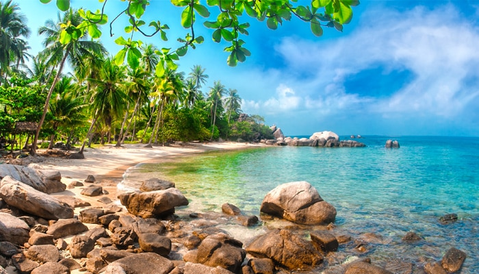 How to go from Koh Samui to Koh Tao