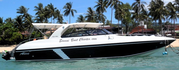 Koh Samui to Koh Tao by private speedboat charter