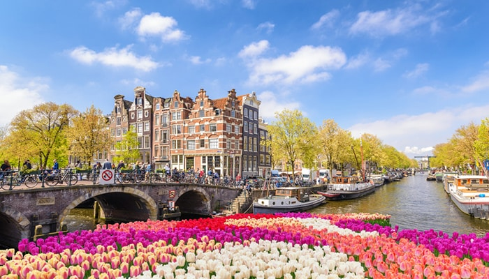 How to go from Rotterdam to Amsterdam